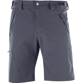 Salomon Wayfarer - Shorts Homme - regular gris